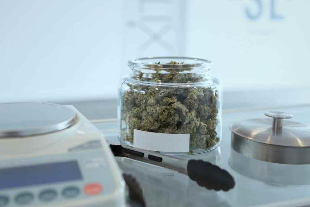 marijuana and parkinson's