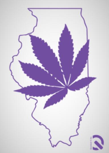 Illinois cannabis consultant