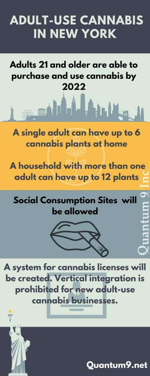 adult-use cannabis in new york