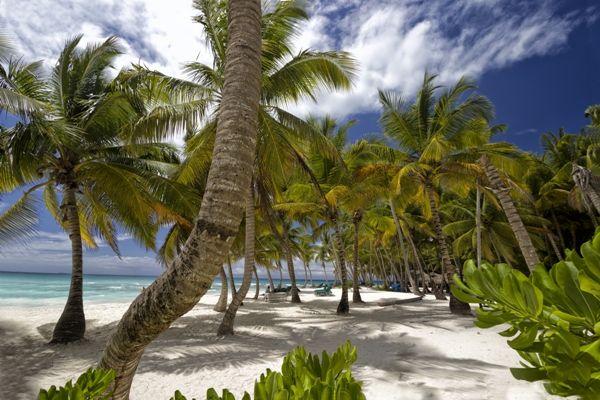 Playa tropical en Bayahíbe