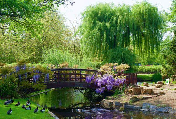 Regents Park en Londres