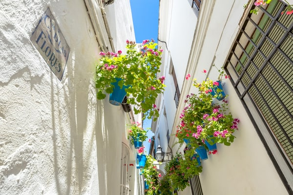 Calle de las Flores, Córdoba