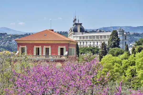 Museo Matisse Niza