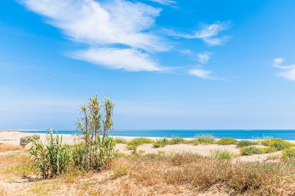 Playa de Isla Canela, Huelva