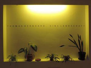 Thomas Bernhard Landschaft