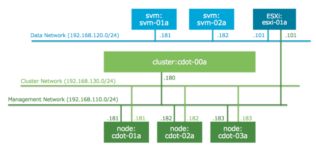 logical network for clustered data ontap
