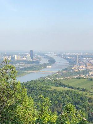 Die Donau, die Neue Donau und als markante Bauwerke der schwarze DC-Tower und der silberne Milleniumstower