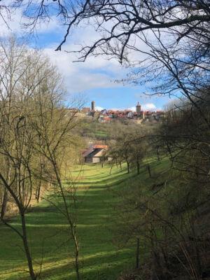 Blick über Wiesen auf Rothenburg ob der Tauber