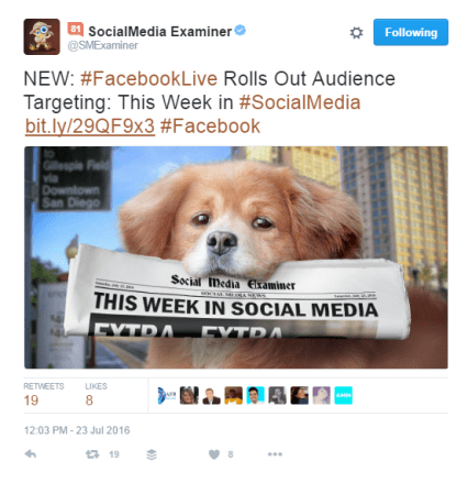 Social Media Examiner is using a generic short link