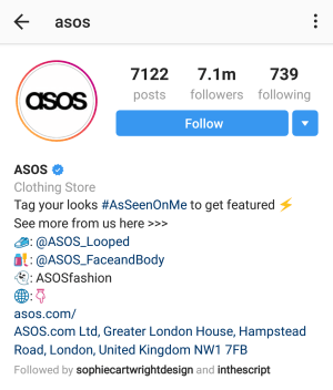 perfect instagram bio example
