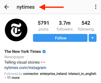 perfect instagram bio example nyt