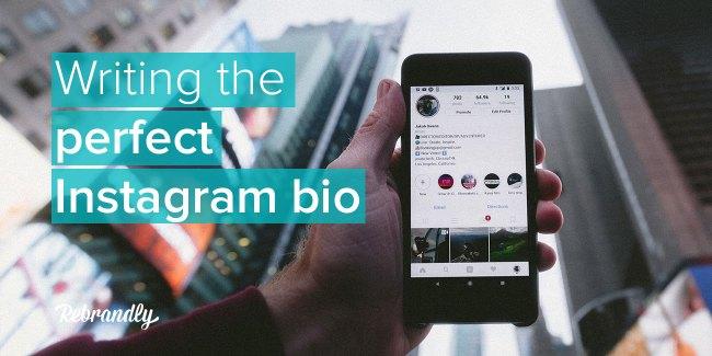 perfect instagram bio banner