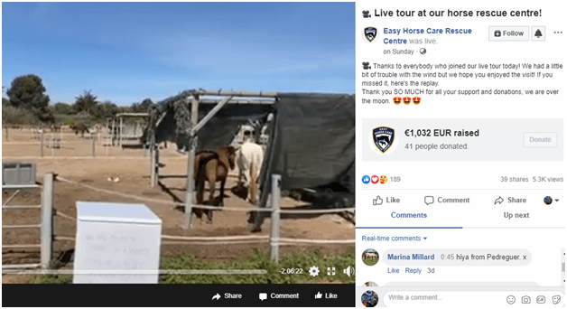 How to Go Live on Facebook horses