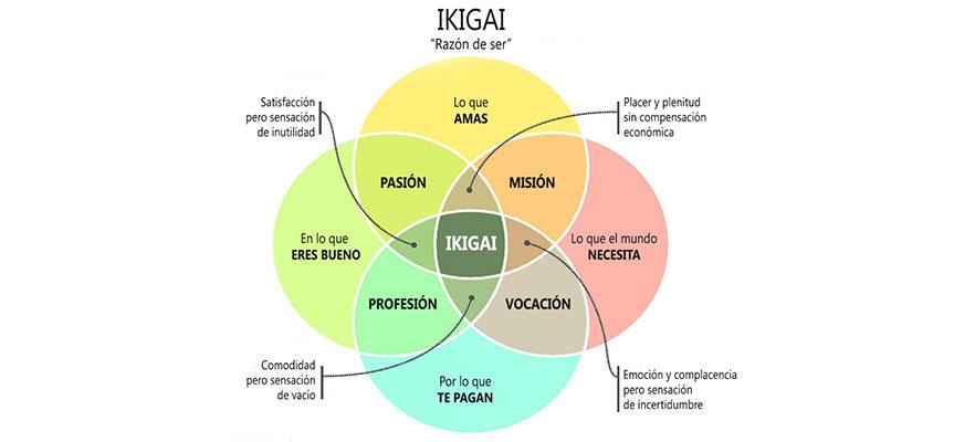 11 leyes del Ikagi