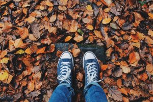 shoes and leaves