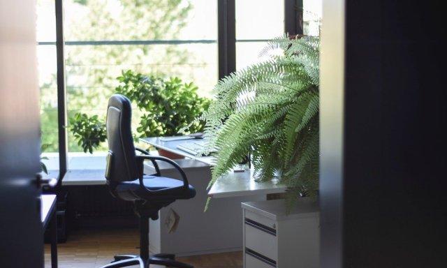 work environment nature
