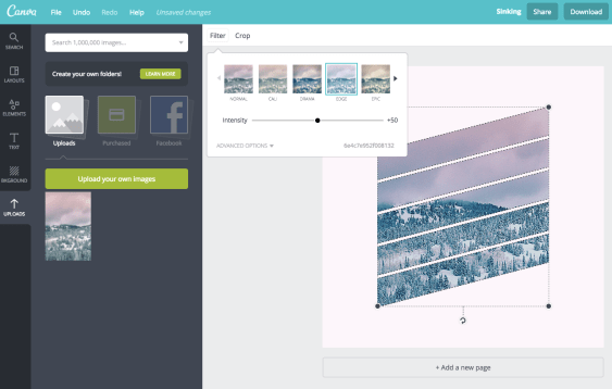 add an image filter in canva