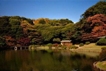 Airbnb - Shinjuku Park Tokyo
