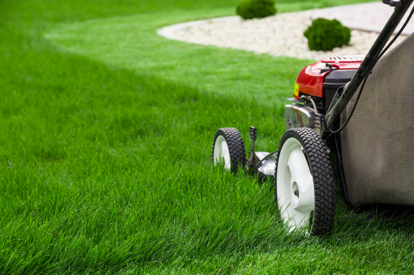 Image result for Lawn Care Services istock