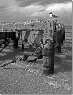 Edgmont Key Old Pier
