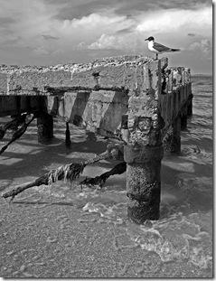 Edgmont Key Old Pier