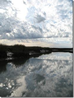 Charleston Marsh