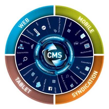 CMS_Infograph_Web