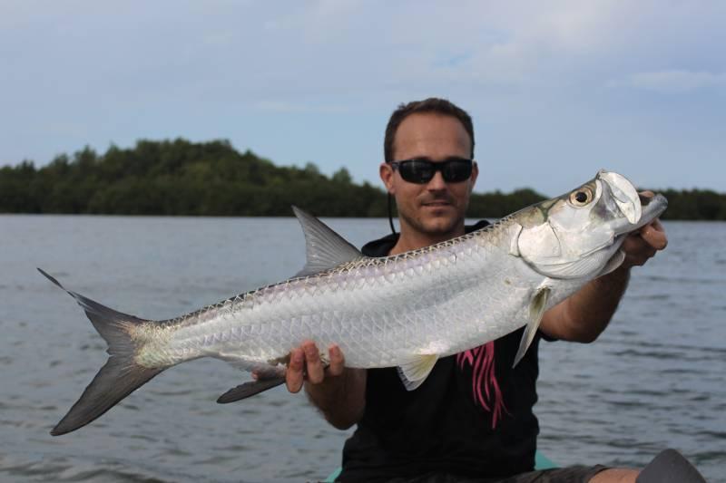 Julien Audonnet_guide de pêche en guadeloupe_pche-aux-leurres-en-mangrove-guadeloupenne.54455515