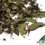 De ce sa consumi ceai alb?