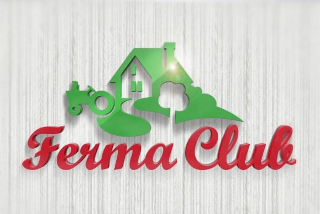 Объем знака2 Новый логотип Ferma Club Новый логотип Ferma Club                      2
