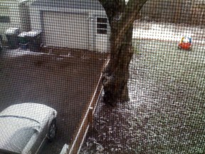 Looking out the back upstairs window on April 26