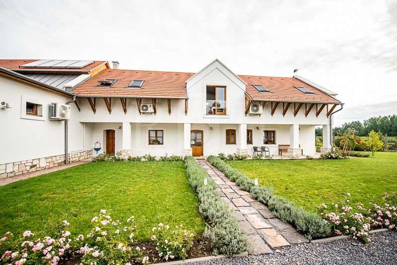 tokaj winery in Hungary-1