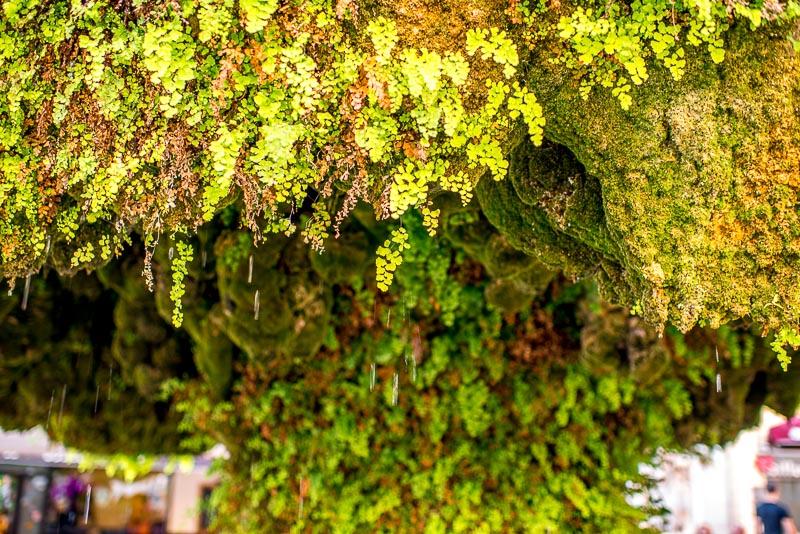 green gardens architecture-13