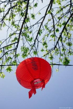 Lantern hung along the street ISO 200 Tongyeong, South Korea
