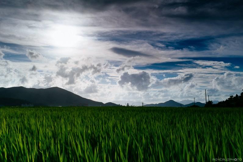 Korea Landscape Photographer Summer Clouds Over Tongyeong-2