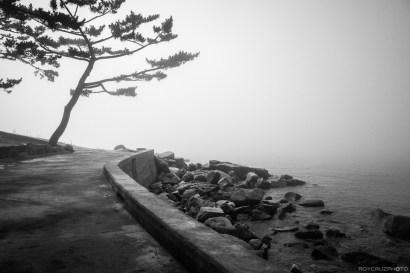 Hansando Tongyeong Korea Travel Photography 통영한산도-7