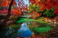 Tongyeong - Miraesa Autumn-1