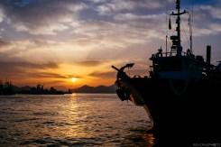 Tongyeong Harbor Morning-1
