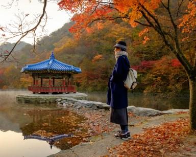Naejangsan Autumn B-2