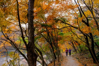 Naejangsan Autumn B-3
