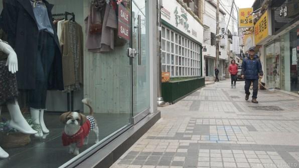 Fujifilm X-H1 IBIS Eterna Street Photography South Korea Roy Cruz-15