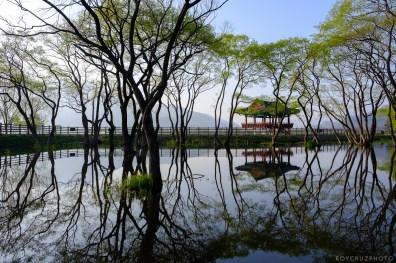 Hadong Gurye South Korea Travel Photographer-6