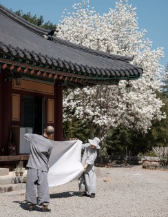 Tongyeong Temple Spring Cleaning-3