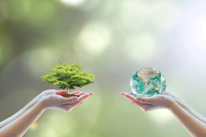 Two hands, one holding a world and one holding a tree