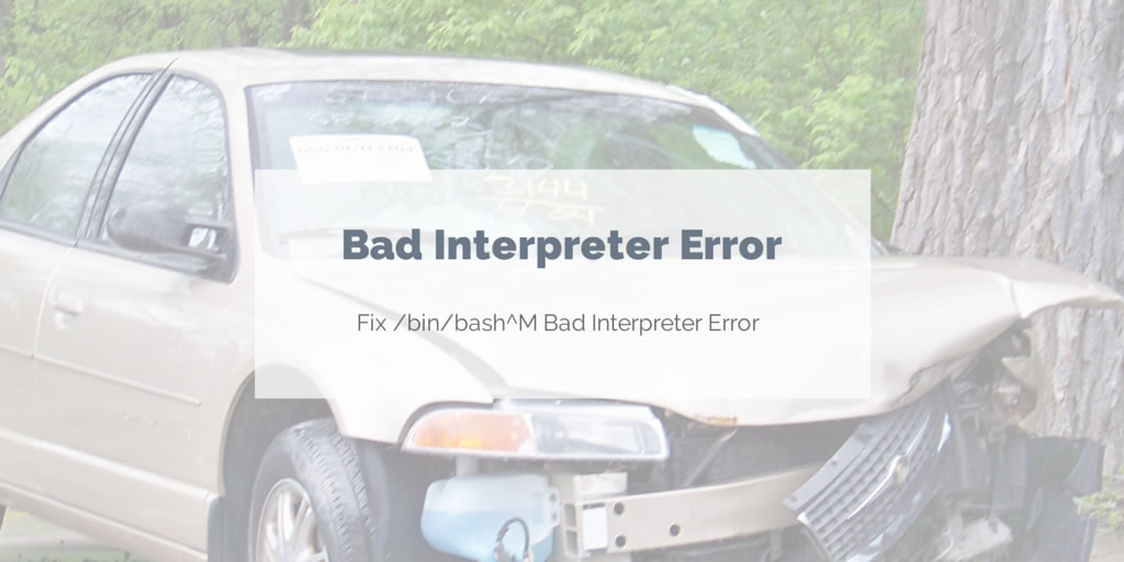 Resolving /bin/bash^M: bad interpreter error