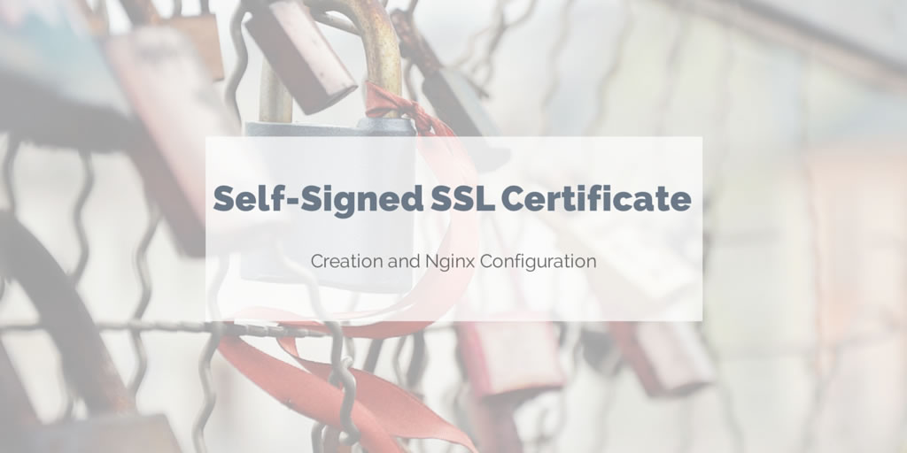 Create a self-signed SSL certificate for Nginx