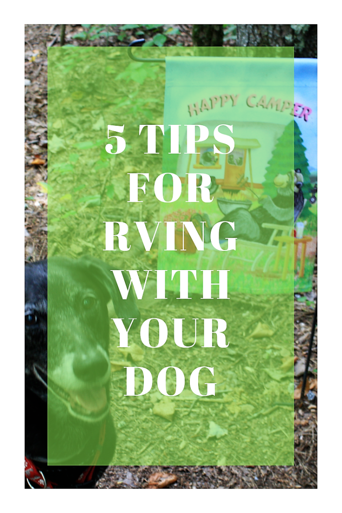 5 Things You Need To Know About Rving With Your Dog.