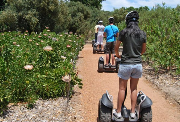 Segway tours at Spier