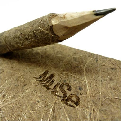 matita-legno-muse