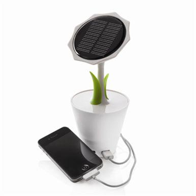 girasole-solare